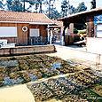 Les Huîtres d'Arcachon-Cap Ferret 2 - SIBA