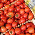 Tomates au marché