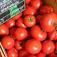Fête de la Tomate